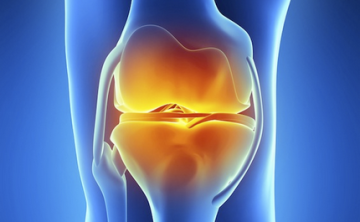 Knee Post-Operative Rehab Protocols