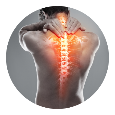Back Pain and Neck Pain