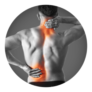 Muscle Injuries and Conditions